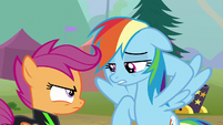 "Rainbow ""make your own decisions"" S8E20"