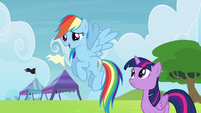 Rainbow looking at Wonderbolts S4E10