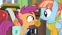"Scootaloo ""trade-sies?"" S7E7"