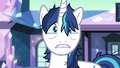 "Shining Armor ""but surprising"" S6E1.png"