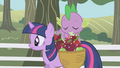 Spike pulling out a shiny red apple S01E03.png