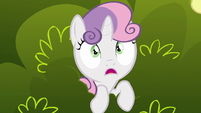 Sweetie Belle --is that really a griffon--- S6E19