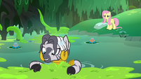 Zecora gathering a large quantity of moss S7E20