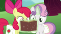 Apple Bloom and Sweetie Belle look at Derby book S6E14.png