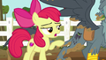 Apple Bloom points out Gabby's running cutie mark S6E19.png
