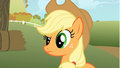 Applejack looks at Rainbow Dash with a questioning look S1E13.png