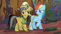 Daring Do --I told you to warn me-- S6E13
