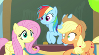 Fluttershy, RD, and Applejack hear Smolder MLPS3