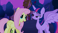 Fluttershy 'Wow, you look just like a princess!' S3E13.png