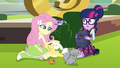 Fluttershy petting Angel Bunny EG3.png