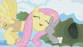 Fluttershy with bunny S01E11.png