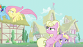 Millie glares at Fluttershy while covering Dinky Doo's ears S6E11.png
