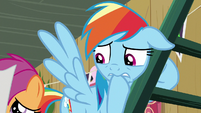 Rainbow Dash nervously bites her hoof S8E20