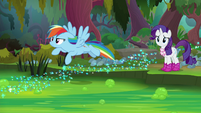 Rainbow tries flying over the swamp S8E17
