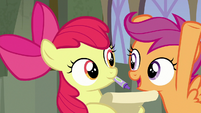 "Scootaloo ""did I mention the flying thing?!"" S8E6"
