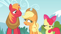 Applejack 'Don't know that it's helpful' S4E09.png