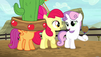 Cutie Mark Crusaders in Appleloosa S5E6