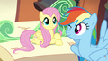 Fluttershy and Rainbow on the train S4E22.png