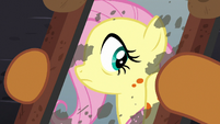 Fluttershy sees orange spots in her reflection S7E20