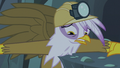 Gilda forced to make a choice S5E8.png