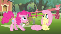 Pinkie Pie 'It'll be so amazing!' S4E14