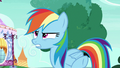 "Rainbow Dash Changeling scornful ""hello, ponies"" S6E25.png"