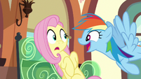 Rainbow Dash excited --totally!-- S6E18