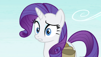 Rarity -whatever do you mean-- S4E23