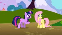 S01E01 Twilight próbuje zapoznać się z Fluttershy