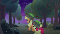 AJ and Apple Bloom explore the orchard S9E10