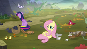 Animals gathering around Fluttershy S5E23