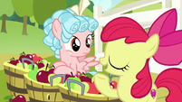 Apple Bloom -friendship means pitchin' in- S8E12