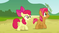 Apple Bloom and Babs hears Applejack S3E08