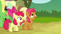 Apple Bloom walking with Babs S3E08