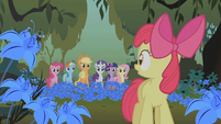 Applejack and friends looking at Apple Bloom S1E09