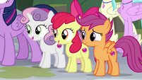 Cutie Mark Crusaders watch the festival S8E6