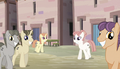 Equalized ponies walking S5E1.png