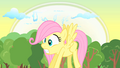 Filly Fluttershy fearful S1E23.png