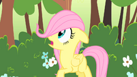 Filly Fluttershy gasp S1E23