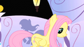 "Fluttershy ""I don't like being a model"" S1E20.png"