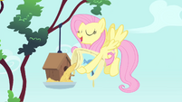 Fluttershy pouring birdseed S4E23