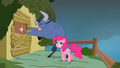 Iron Will attempts to break into Fluttershy' home S2E19.png