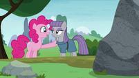 Pinkie Pie -he's a rock!- S8E3