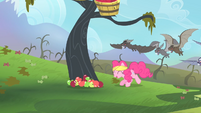 Pinkie leaving the apples onto the ground for the bats to consume S4E07