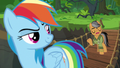 "Quibble ""if this were really a real Daring Do adventure"" S6E13.png"