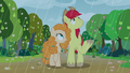 Rain starts falling on Bright Mac and Pear Butter S7E13.png