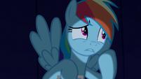 Rainbow --as long as nopony else eats the cookies-- S6E15