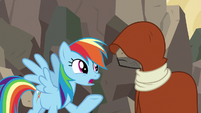 "Rainbow Dash ""if Ahuizotl had gotten away"" S7E18"