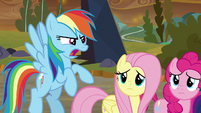 "Rainbow Dash ""not if I can help it!"" S9E2"