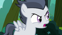 Rumble -because cutie marks are silly- S7E21